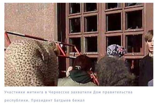 """20 """"История успеха"""" династии Каитовых"""
