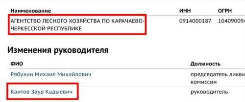 """26 """"История успеха"""" династии Каитовых"""