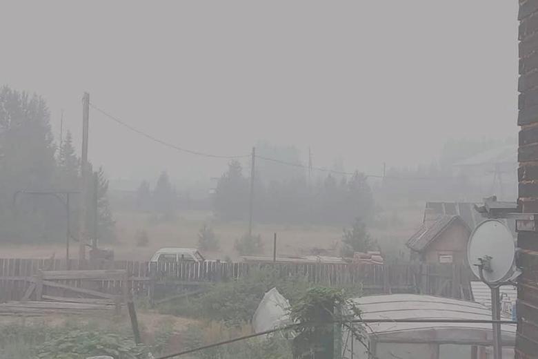 Нет леса — нет проблем. Сибирские пожары — лишь прикрытие массовых вырубок леса?