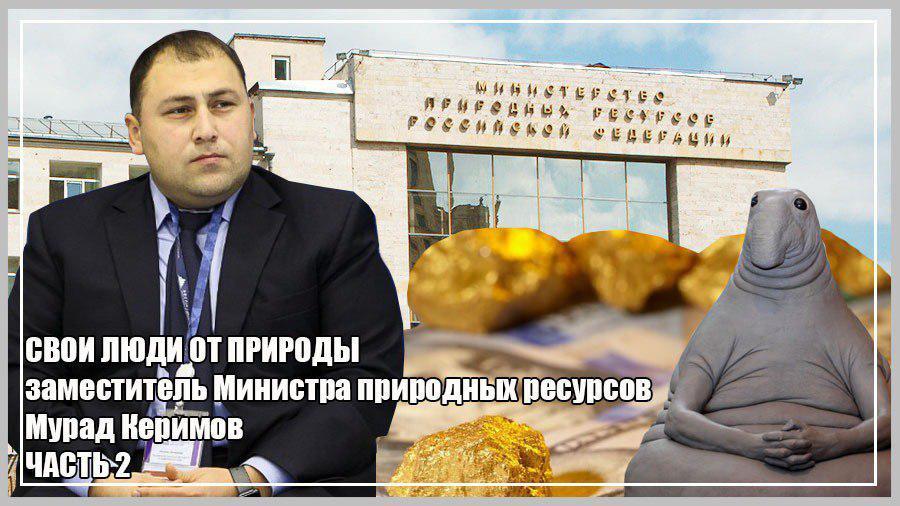 Заместитель Министра природных ресурсов Мурад Керимов. ЧАСТЬ 2