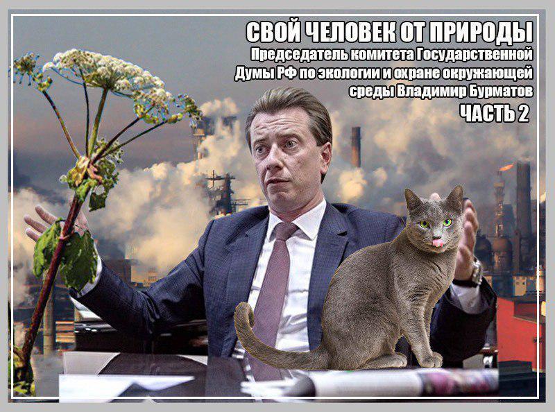 Председатель комитета Государственной Думы РФ по экологии и охране окружающей среды Владимир Бурматов